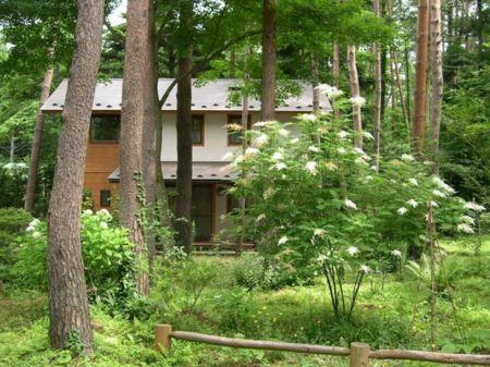 森は天然のクーラー/河口湖 マミアーナビレッジ