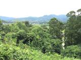 和室からの眺め/貸別荘 桃源郷の湯